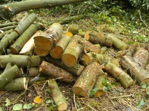 Holz von Hand gesägt